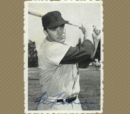 1969 Topps Deckle Edge Al Ferrara #30 Baseball Card
