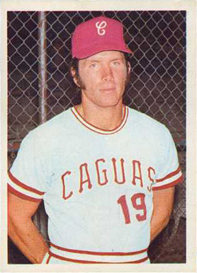 1972 Puerto Rican League Sticker Mike Schmidt #64 Baseball Card