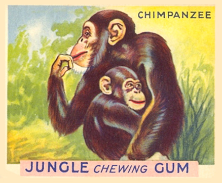 1930 World Wide Gum Jungle Gum   #4 Non-Sports Card