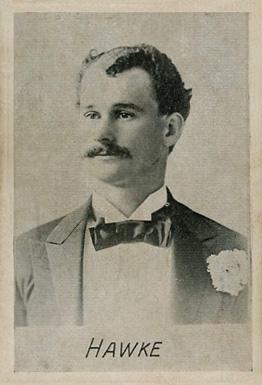 1894 Alpha Photo Engraving Bill Hawke #7 Baseball Card